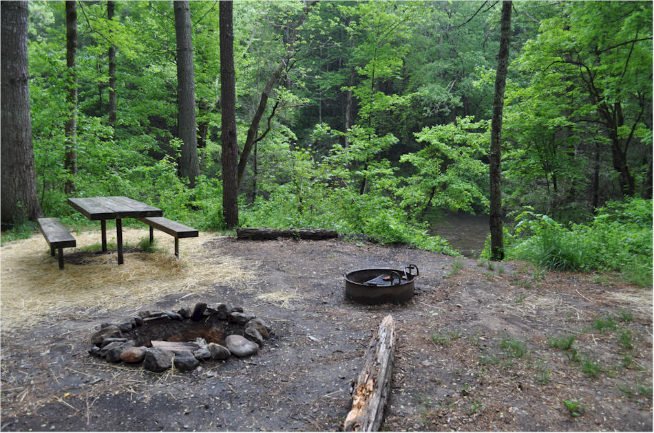 Overflow Road Primitive Camping Area